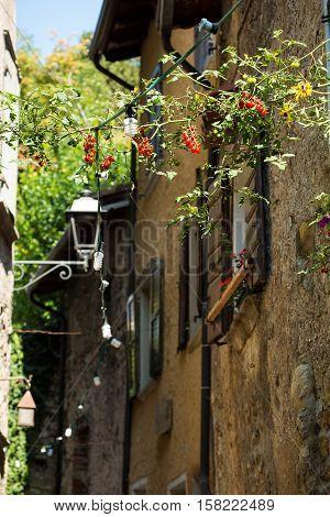 Old Italian Streets