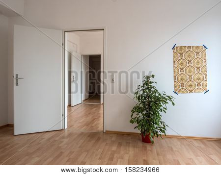 apartment with wallpaper and flowers stock