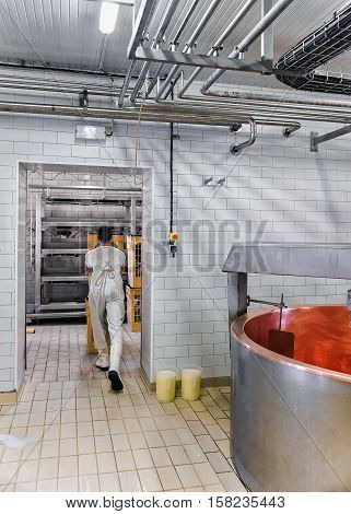 Cheese Maker Working In The Dairy In France