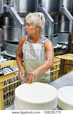 Cheesemaker Putting Young Comte Cheese Into Forms Dairy