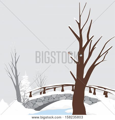 The trees, the old bridge - vector illustration