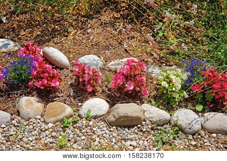 Decorative Flowers At Inner Yard In Yverdon In Switzerland