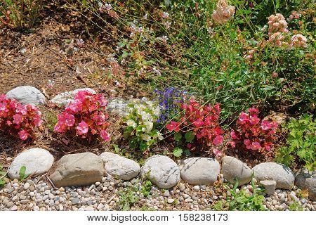 Decorative Flowers At Inner Yard Of Yverdon In Switzerland