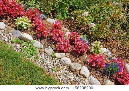 Decorative Flowers In Inner Yard In Yverdon In Switzerland