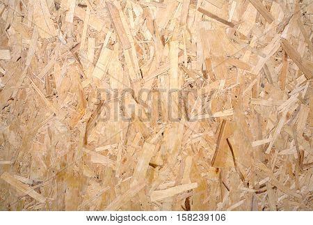 Oriented Strand Board. Wooden panel made from pressed sandy brown wood shavings as background horizontal view closeup