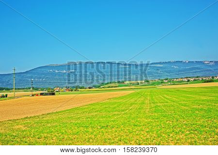 Field In Yverdon Les Bains Jura Nord Vaudois Vaud Swiss