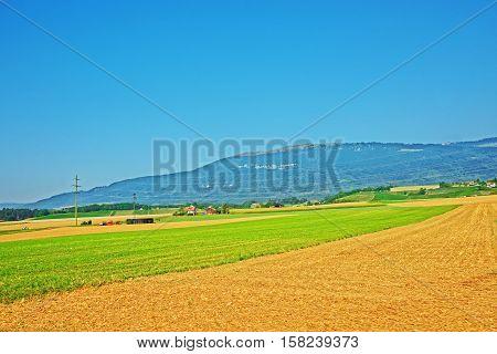 Field In Yverdon Les Bains Jura Nord Vaudois Vaud Switzerland