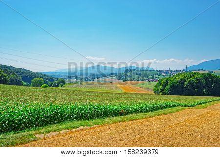 Field In Yverdon Of Jura Nord Vaudois Vaud Switzerland
