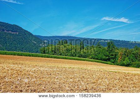 Fields At Yverdon Les Bains Jura Nord Vaudois Vaud Switzerland