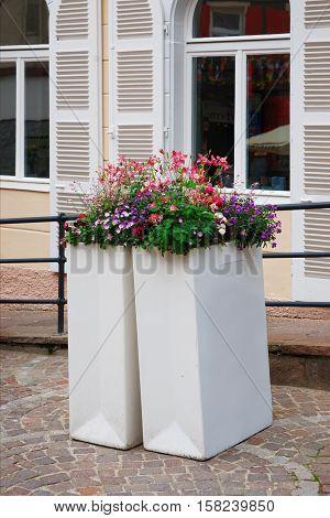 Flowerbed In City Center Of Baden Baden Germany