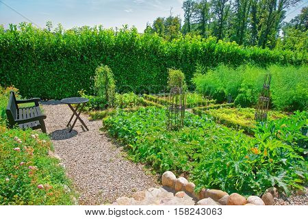 Inner Garden In Yverdon In Jura Nord Vaudois Vaud Switzerland