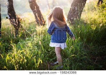 Little girl with long hair running, meadow, sunset. View from back