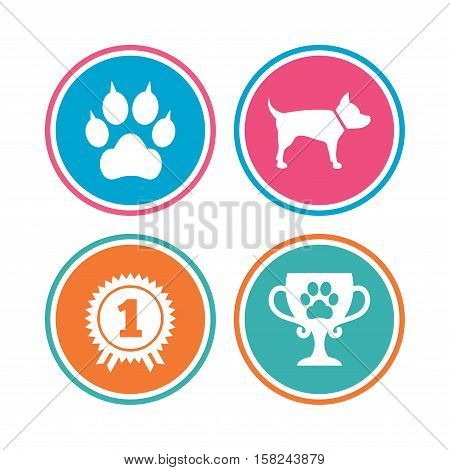 Pets icons. Cat paw with clutches sign. Winner cup and medal symbol. Dog silhouette. Colored circle buttons. Vector