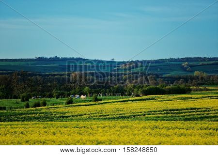 Panorama Of Vezelay In Bourgogne Franche Comte Region Of France