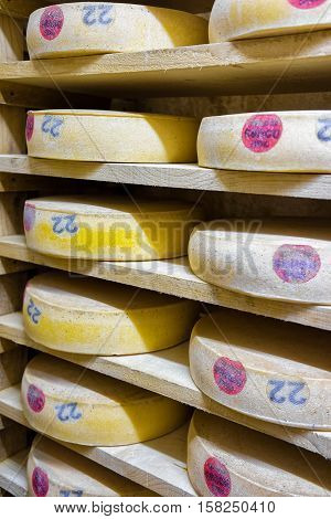 Pile Of Aging Cheese In Ripening Cellar Franche Comte Creamery