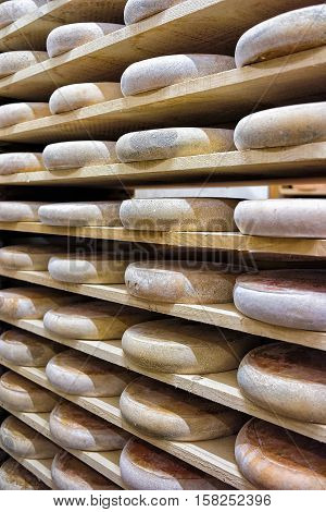 Rows Of Aging Cheese In Maturing Cellar Franche Comte Creamery