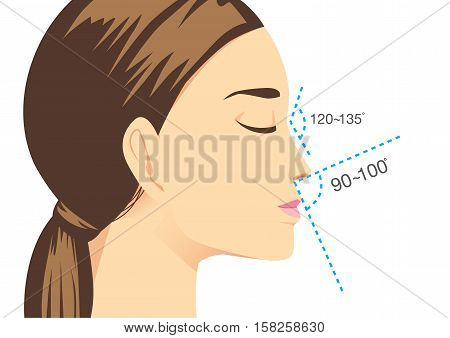 Ideal nose characteristics for woman. Illustration about beauty surgery.