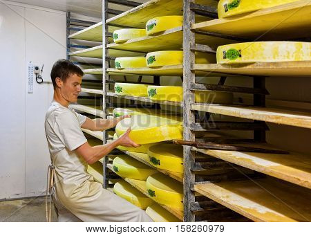 Worker In Maturing Cellar With Conte Cheese Of Creamery