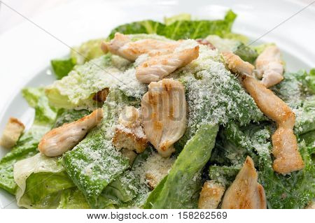 Fresh vegetable salad with chicken meat on plate