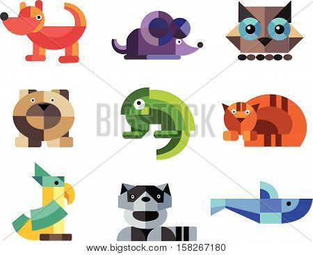 animal design character pets raccoon life elements form bear white bird parrot beautiful iguana