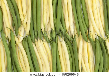 fresh green and yellow bean a arranged vertically