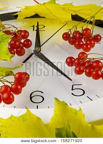 5 o'clock. Clock face with yellow leaves and red ripe viburnum. Autumn time.
