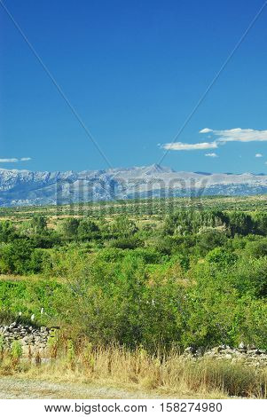 Sunny day landscape of croatian green field, mountains and blue sky