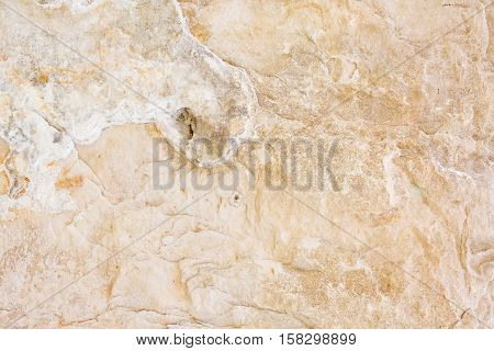 Yellow creme beige light stone textured background with honeycombs holes lines and curves waved closeup