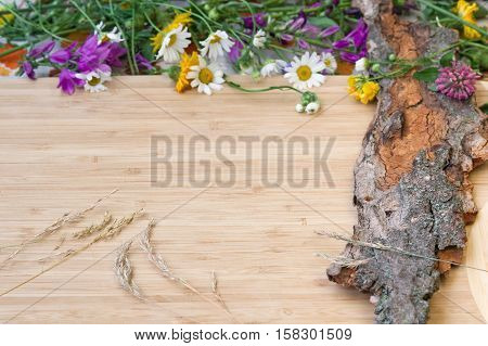 Closeup of clover and camomile flowers with stems and green leaves with a bunch of spikelets on old wooden bark with rough texture background on a light wooden board card copy space. Selective focus