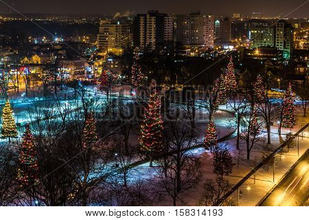 Christmas trees light up the night in Victoria Park in London Ontario Canada
