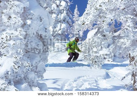 Skiers downhill in white frozen forest. Skiing freeride. Sheregesh ski and snowboard resort