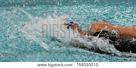 Hong Kong China - Oct 29 2016. Olympic world and European champion swimmer Katinka HOSSZU (HUN) swimming backstroke. FINA Swimming World Cup Preliminary Heats Victoria Park Swimming Pool.