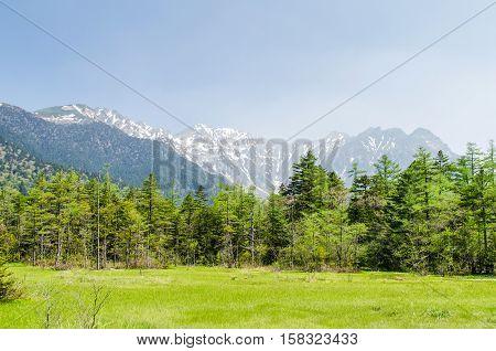 Hotaka mountain range and green field in spring at kamikochi national park nagano japan