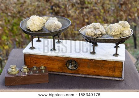 Some White Truffles On The Scales
