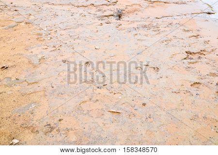 Image of riverside that have mud sand and clay that called mud beach.