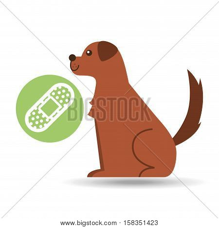 veterinary clinic concept cure band vector illustration eps 10