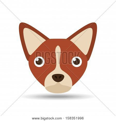 lovely head puppy dog chihuahua brown vector illustration eps 10