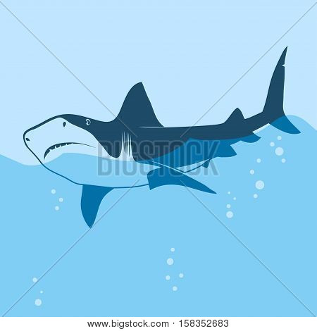 Great white shark in the sea water, blue silhouette. Big predator fish on ocean waves. Vector illustration