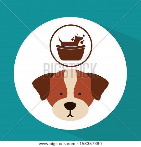 veterinary dog care gromming icon vector illustration eps 10