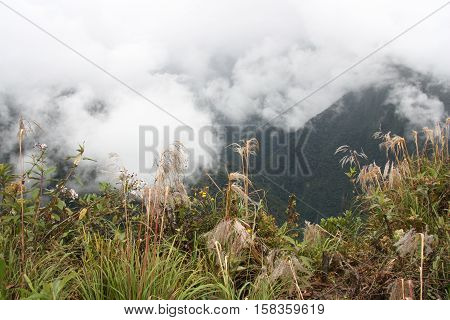 Beautiful view of the mountains in clouds, Death road, Yungas region, Bolivia, South America