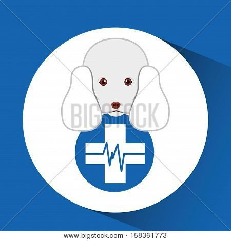 digital pet shop with poodle and clinic symbol vector illustration eps 10