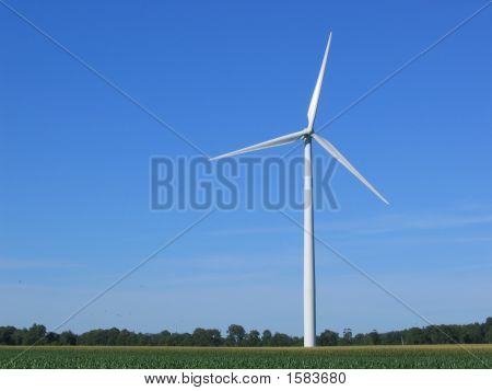 Solitary windmill