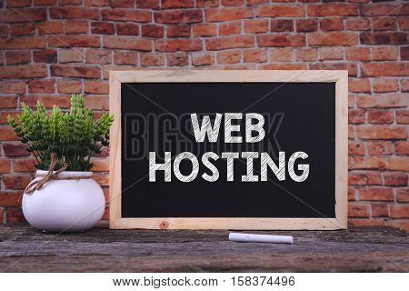 WEB HOSTING word on blackboard with green plant