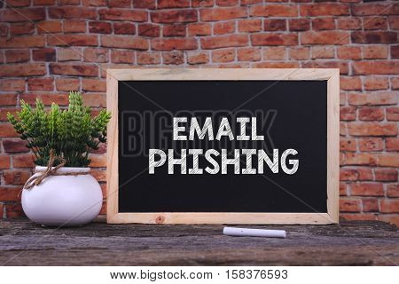 Email Phishing Word On Blackboard With Green Plant.