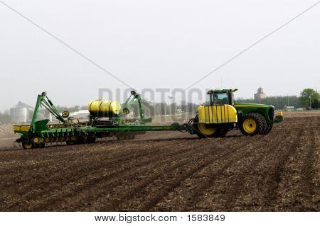 Spring Field Work