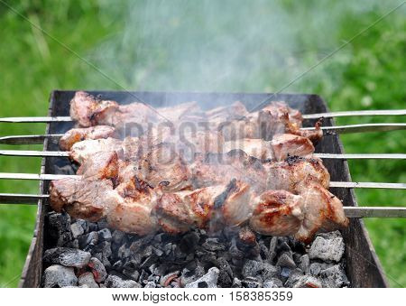 Barbecue Beef Kebabs On The Hot Grill Coals In Nature Close-up