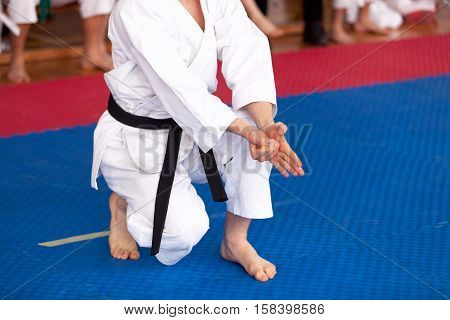 Karate practitioner body position during training. Martial art .