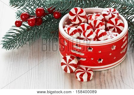 Peppermint sweet candy and Christmas decoration with berries and pine branch/Peppermint Christmas candy