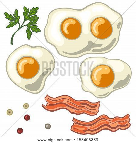 Fried egg isolated on white background with fried bacon papper and cilantro vector illustration