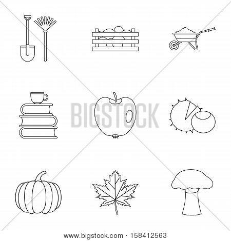 Season of year autumn icons set. Outline illustration of 9 season of year autumn vector icons for web